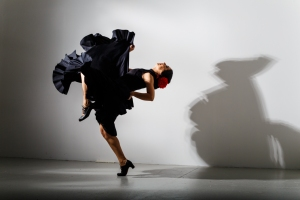 Flamenco Dancer for parties and events