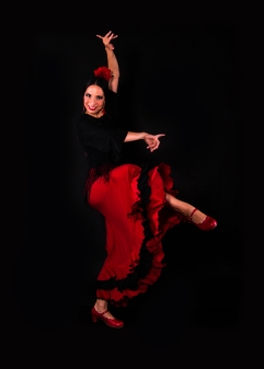 Book a Flamenco Dancer London