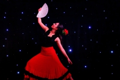 London Flamenco Dancer For Hire