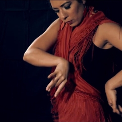 Flamenco dancer for parties London Essex Kent